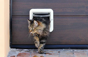 Cat Flap Fitter Letchworth
