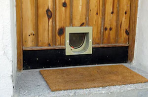 Cat Flap Fitters Northampton UK